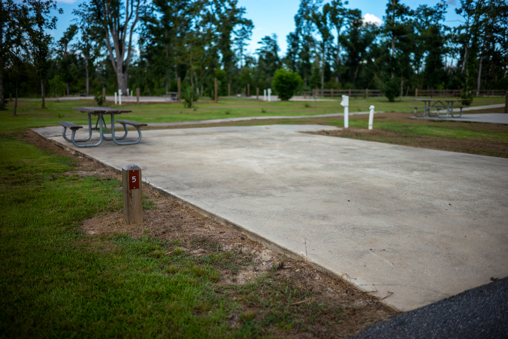 Campsite 5 with a concrete pad, picnic table and full hook ups at Florida Caverns State Park.